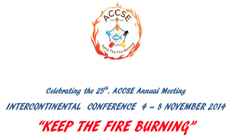Celebrating the 25th ACCSE Annual Meeting
